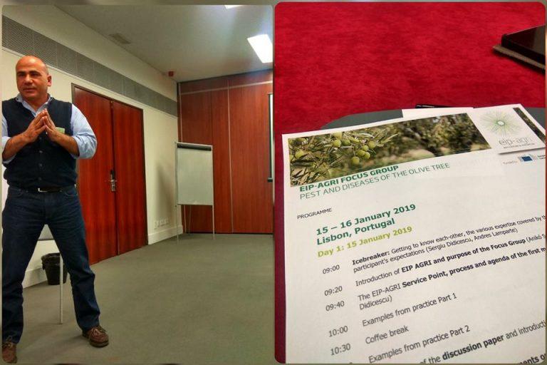 Παρουσίαση του έργουLife IGIC στο EIP-Agri's Focus Group on Olive Pests and Diseases