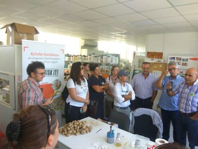 Life IGIC participated in the EIP-AGRI's Focus Group on Pests and Diseases