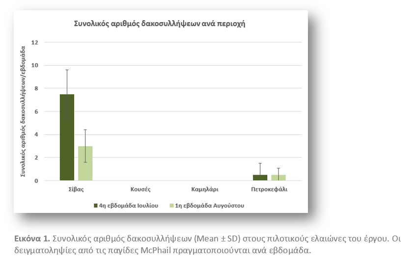 Πληθυσμός δάκου και δακοπροσβολή ελαιοκάρπου στις περιοχές εφαρμογής του έργου, κατά την περίοδο Ιουλίου - Αυγούστου 2020