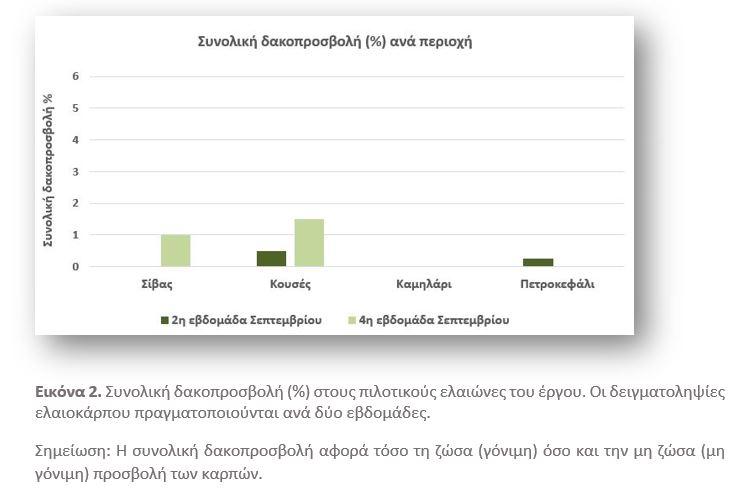 Πληθυσμός δάκου και δακοπροσβολή ελαιοκάρπου στις περιοχές εφαρμογής του έργου, κατά την περίοδο Σεπτεμβρίου 2020