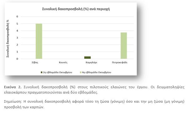 Πληθυσμός δάκου και δακοπροσβολή ελαιοκάρπου στις περιοχές εφαρμογής του έργου, κατά την περίοδο Οκτωβρίου 2020